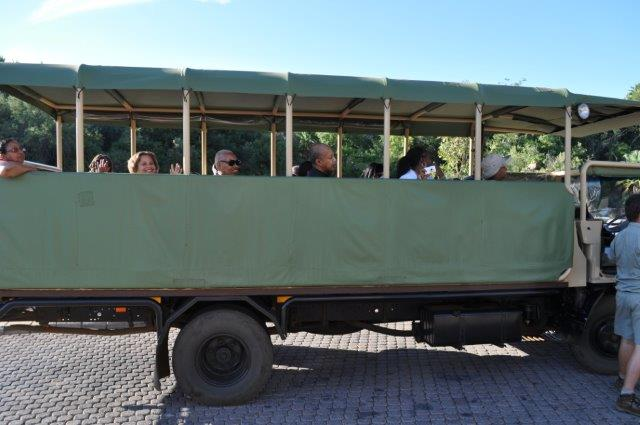 sun-city-game-drive-pilansberg-reserve-1